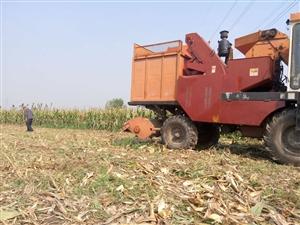 玉米收割机出售