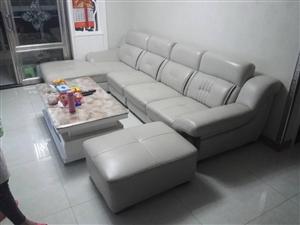 低价转让9.9成新真皮沙发