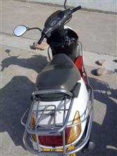 现有一辆白色五羊摩托车因换新车了想买了有意者联系