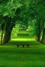时光的信笺上,总是在不知不觉中,有阳光的窗,有花赏,有书读,便是美好的人生,既便粗茶淡饭,也必须让内
