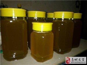 土蜂蜜百花蜂蜜