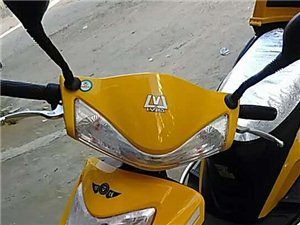 本人绿佳牌鹅黄色二轮电动车被盗