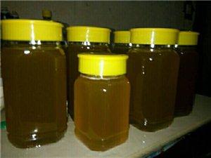 纯正土蜂蜜成熟土蜂蜜