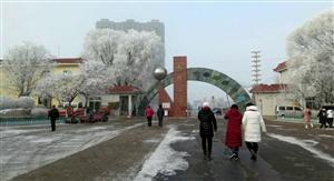 078朱桂萍