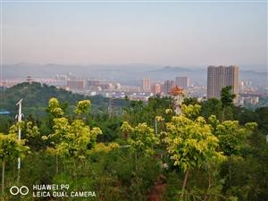 085刘长海