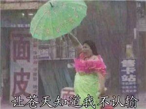 【美女秀�觥��涵