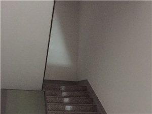 虹桥新中医院斜后面2室2厅1卫3000元/月