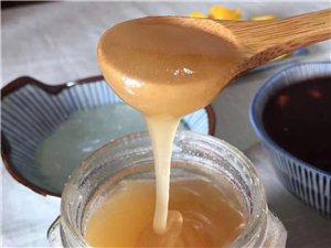 �天然蜂(招代理)