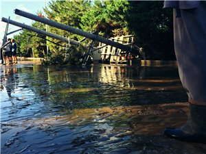 湿地公园洪水过后的重建