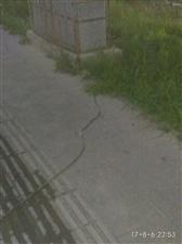 电线裸漏很危险