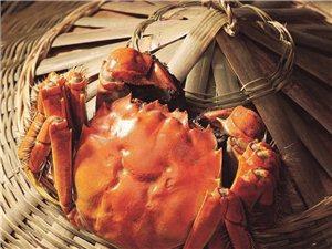 寻找大闸蟹合作伙伴