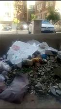 小区物业收费不干活,垃圾滞留无人清理,谁来管