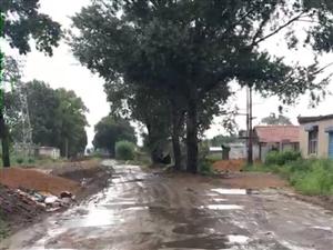 铁锋区建材委员磷肥厂东威陶瓷路段老百姓出行难
