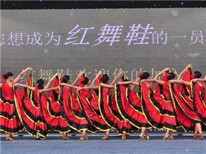 红舞鞋专业舞蹈培训正在招生