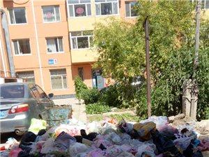 惠安小区物业罢工至今无人管理
