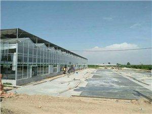 园区规划 温室设计建设