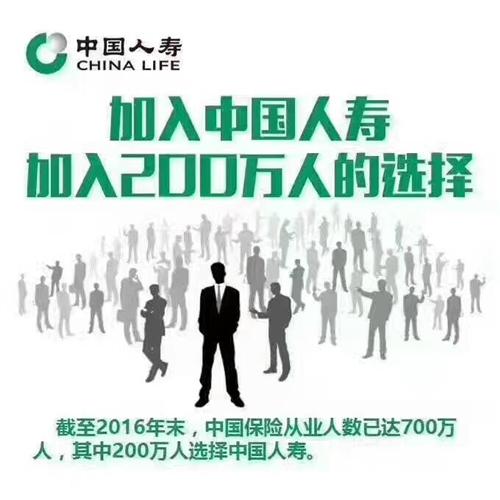 中国人寿保险股份公司枝江支公司