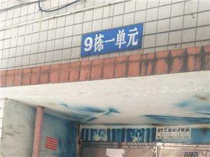 商业城5室3厅3卫2000元/月