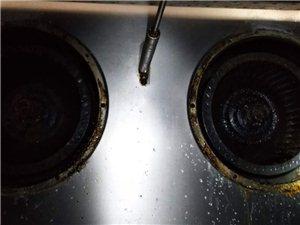 專業家電清洗,殺菌,消毒,除異味,一次完成!
