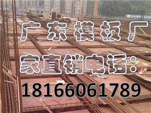 本店长期批发零售广东绿源建筑模板