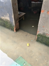 固镇张桥美丽乡村给我家建的水都出不去了,大家看看,一门口都是水连院子里都是水,请大家给点意见,帮助我