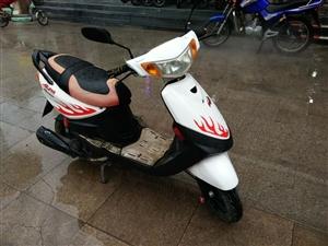 出售巧格摩托车