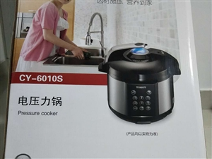 电压力锅,6升双胆电压力锅,有要的吗?