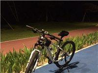 土撥鼠山地自行車