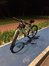 土拨鼠山地自行车