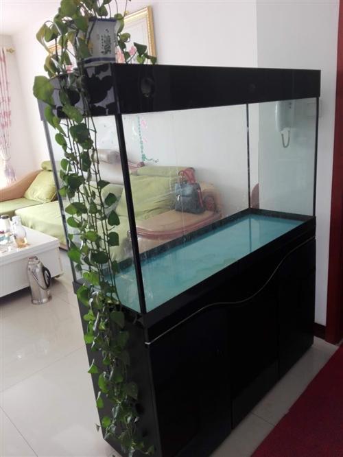 魚缸,長120厘米,寬41厘米,因閑置不...
