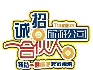 旅游公司合伙人