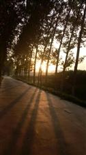 跑步随手拍健康快乐每一天