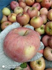 恶石村苹果,需要的来看看。