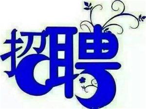 野三关酒业枝江总营销部招募
