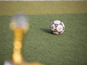 招远市五人制足球联赛