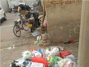 老区温馨家园去年物业费210元,还有收拾垃圾的人呢,今年240元了就没有收拾垃圾的人了。请问我们交的