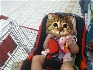 车载婴儿安全摇篮。安全,方便。八成新!孩子大了,用不了了。便宜转卖。