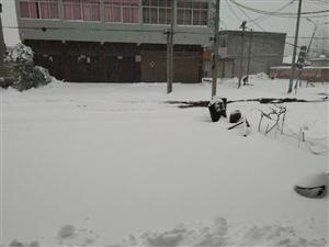 2018年首场大雪覆盖信阳大地