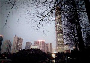深圳本地游记:荔枝公园