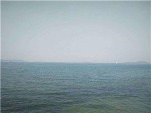 深圳本地游�:南澳�蠲房�