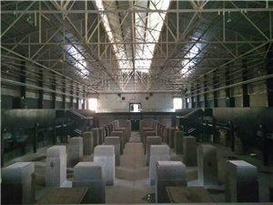 深圳本地游记:蛇口价值工厂①