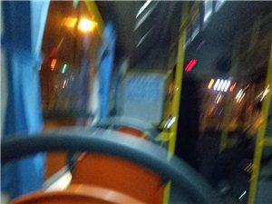 公交司机随心所欲