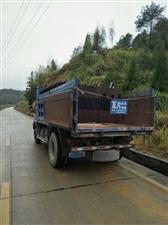 瑞沃140蓝牌货车