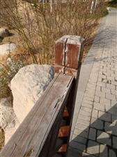轩辕湖湿地公园公共设施