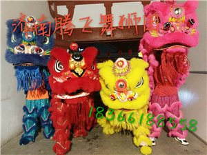 齊河開業婚禮舞獅,武術,水鼓