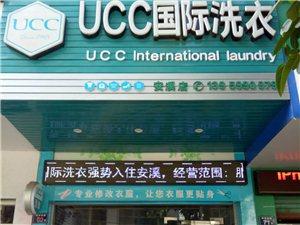 UCC国际洗衣店转让