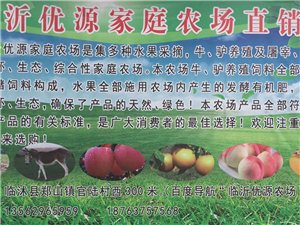 臨沂優源農場綠色有機食品
