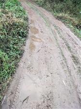 富顺城郊泥泞公路,交通局走点心好不好!