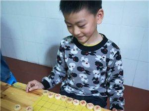 安溪啟智象棋寒假培訓