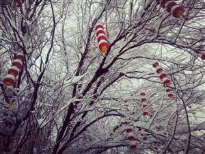 记得小时候冬天经常下雪,雪很深,快要没过小腿,气温也极低,路上也很少有车,只有行人和上学的小孩,还有